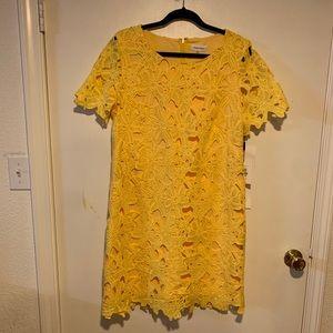 Calvin Klein yellow lace shift dress - size 14